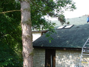 střecha Trutnov 005