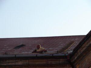 střechy Josefov 007