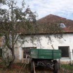 střecha Starý Ples 014